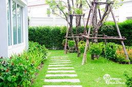 ข้อควรรู้! ก่อนปลูกต้นไม้รอบบ้านให้สวยงามร่มรื่นและน่าอยู่