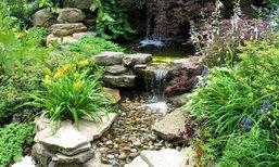 กระตุกไอเดียจัดสวน..แต่งเติมเสน่ห์ให้สวนสวยสมบูรณ์แบบ