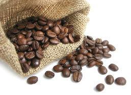 5 เรื่องสนุกๆ ของกาแฟ กับงานสวน