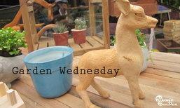 ร้านเก๋ๆ สไตล์คนชอบจัดสวน...Garden Wednesday