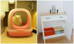 ทำห้องน้ำแมวให้เข้ากับบ้านสไตล์คอทเทจ