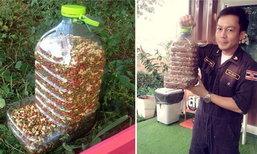 DIY ที่ให้อาหารแมวและสุนัข ทําเอง (ออโต้)