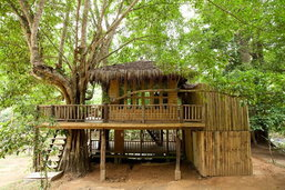 บ้านต้นไม้ รีสอร์ท หลังคามุงจาก มีชานไม้ระเบียงไม้