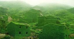 หมู่บ้านชาวประมงจีนที่ถูกทิ้งร้างให้กลืนหายไปในธรรมชาติ แต่มันกลับสวยงามมากๆ