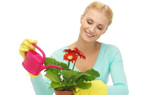 10 เรื่องทำความสะอาดบ้าน ที่เราไม่เคยรู้มาก่อน