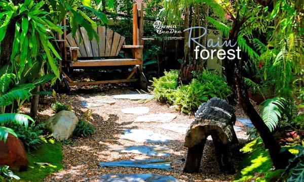 Rain Forest รื่นรมย์ใต้ป่าดิบชื้น