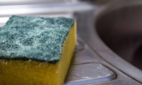เทคนิคยืดอายุฟองน้ำในครัว
