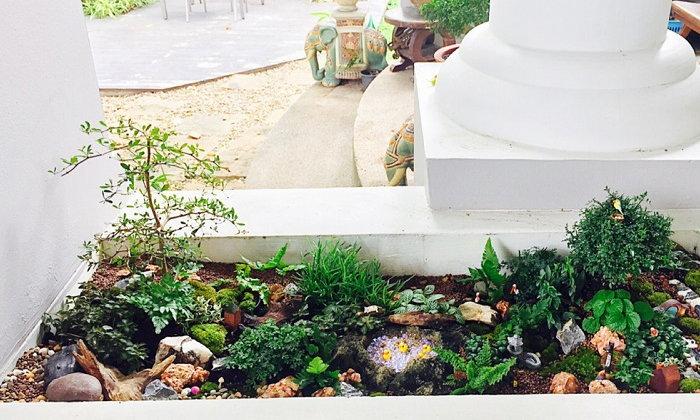 ปรับรางต้นไม้หน้าบ้าน เป็น giant tray garden