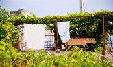 6 ขั้นตอนปลูกผัก ทำสวนบนดาดฟ้าแบบไม่ง้อพื้นดิน
