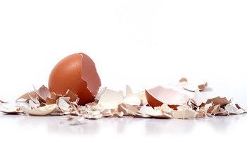 """5 ประโยชน์งาน """"สวน"""" จากเปลือกไข่"""