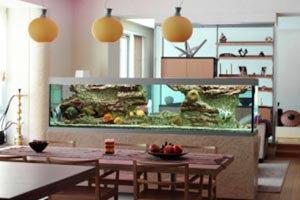 จัดวางตู้ปลาอย่างไรให้ถูกหลักฮวงจุ้ย