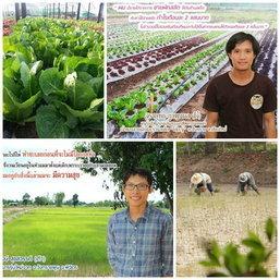 """วิถี  """"เกษตรกรคนรุ่นใหม่"""" ขายผักขำๆ กำไรเดือนละ 2 แสน"""