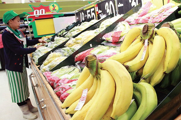 """""""กล้วยหอมทอง""""บูมสุดขีดราคาพุ่ง100%"""