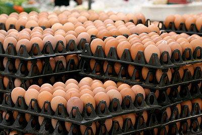 วิกฤติไข่แพง ราคาอาหาร-ขนมปังขึ้น