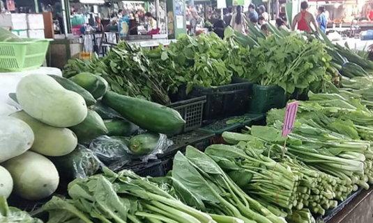 พาณิชย์เผยผักชีขึ้นราคาแตะ 200-210บ./กก.