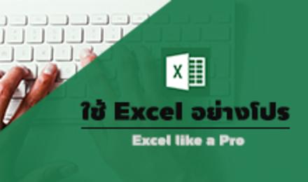 ใช้ Excel อย่างโปร