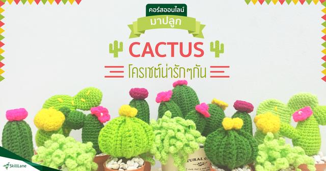 มาปลูก Cactus โครเชต์น่ารักๆ กัน