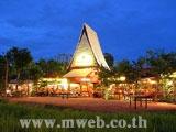 ทุ่งข้าวกลางกรุงกับสวนกาแฟใหญ่ที่สุดในโลก....บ้านใร่กาแฟ