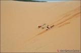 Red Sand Dune มุยเน่ เวียตนาม
