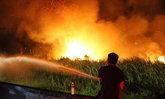 """""""ภัยแล้ง"""" ไฟไหม้ป่าปรือข้างทางกว่า 200 ไร่-ชาวบ้านอยู่อย่างผวาหวิดบ้านถูกเผาทุกปี"""