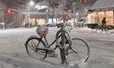 สหรัฐฯ เจอฤทธิ์หิมะแรกของปี ตกขาวโพลนหลายพื้นที่ คมนาคมหยุดชะงัก