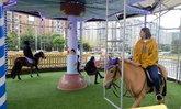 """ชาวเน็ตจีนวิจารณ์ยับ เครื่องเล่นม้าหมุนใช้ """"ม้าจริง"""" ให้คนขึ้นขี่"""