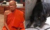 เปิดลางบอกเหตุถึง 2 ครั้ง ก่อนหลวงตาถูกรถชนมรณภาพ เพื่อปกป้องหมาแสนรัก